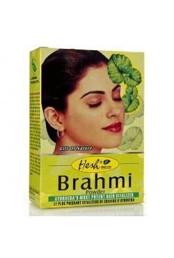 Hesh Brahmi soins contre la chute des cheveux vivifie leurs colorations 100% naturel
