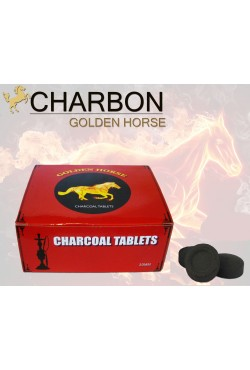 Charbon auto allumant golden horse